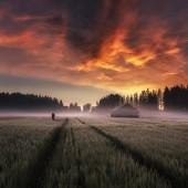 New Dawn.